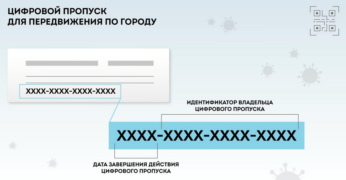 Цифровой пропуск